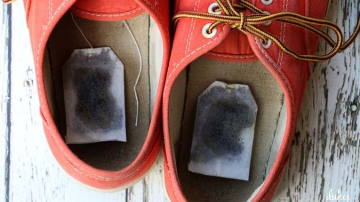 X-Clean đặt túi lọc trà vào giày khử mùi và hút ẩm nhanh chóng